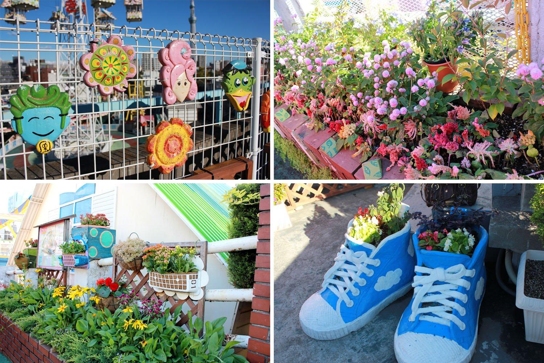 flowers at Hanayashiki Amusement Park Tokyo