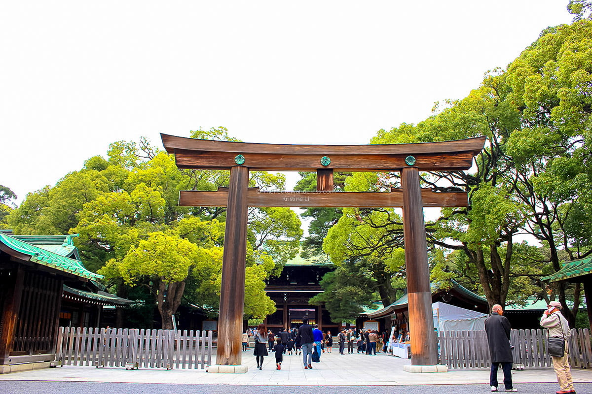 Meiji Shrine entrance | Shichi-Go-San: Tokyo's most colourful festival in November • The Petite Wanderess