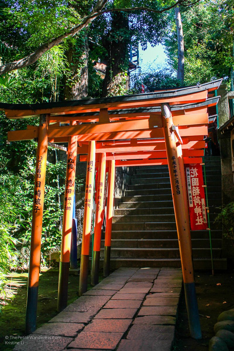 torii gates at Ueno Park | How the First Solo Trip Changed Me • The Petite Wanderess