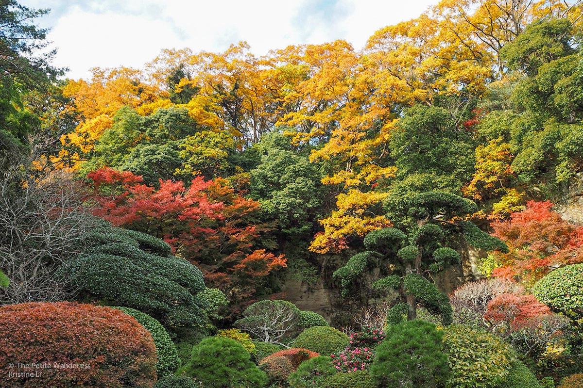 autumn foliage at Hokokuji | Kamakura Day Trip in autumn • The Petite Wanderess