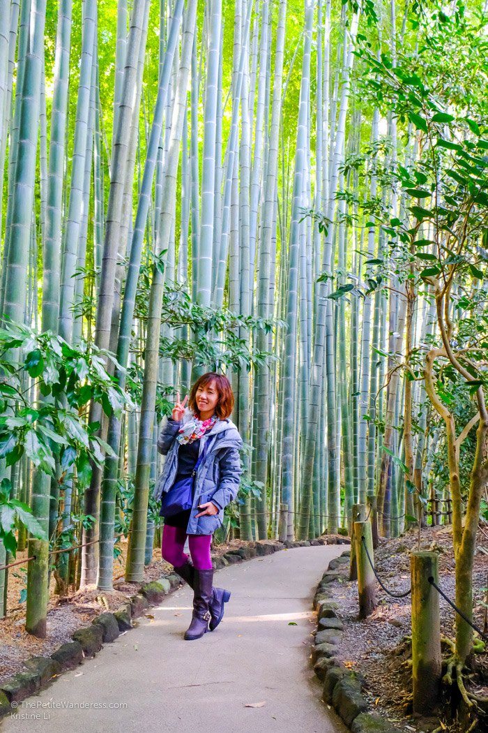 bamboo garden, Hokokuji temple | Kamakura Day Trip in autumn • The Petite Wanderess