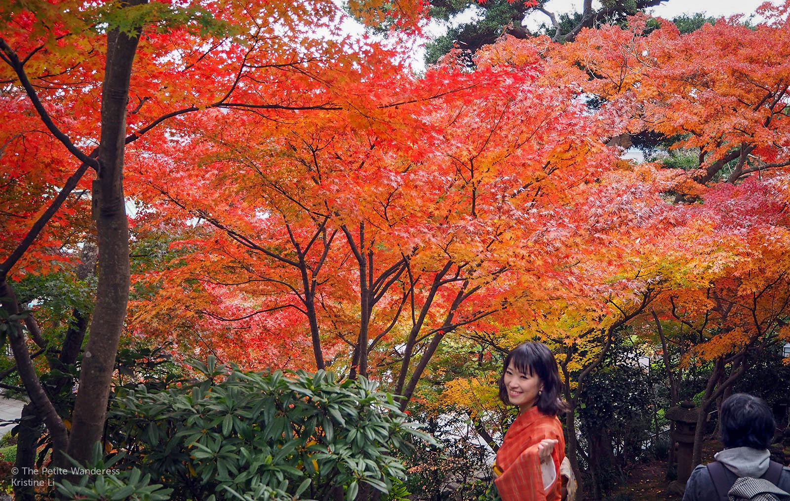 Kamakura Day Trip in autumn • The Petite Wanderess