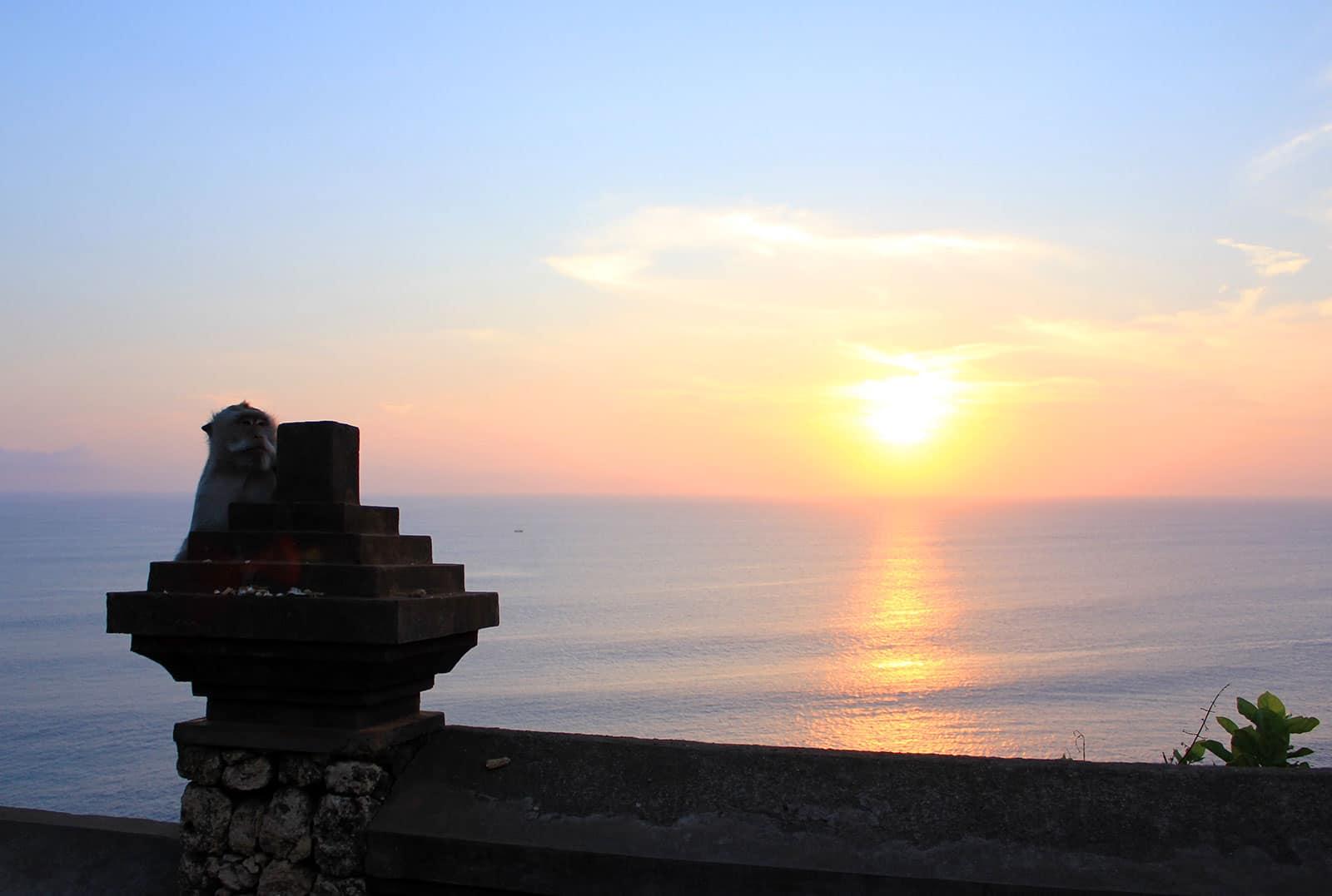 bali-sunset-uluwatu-monkey