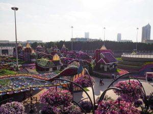 Dubai Miracle Garden • The Petite Wanderess