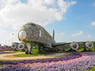 Dubai Miracle Garden, an amazing garden in the middle of the desert!