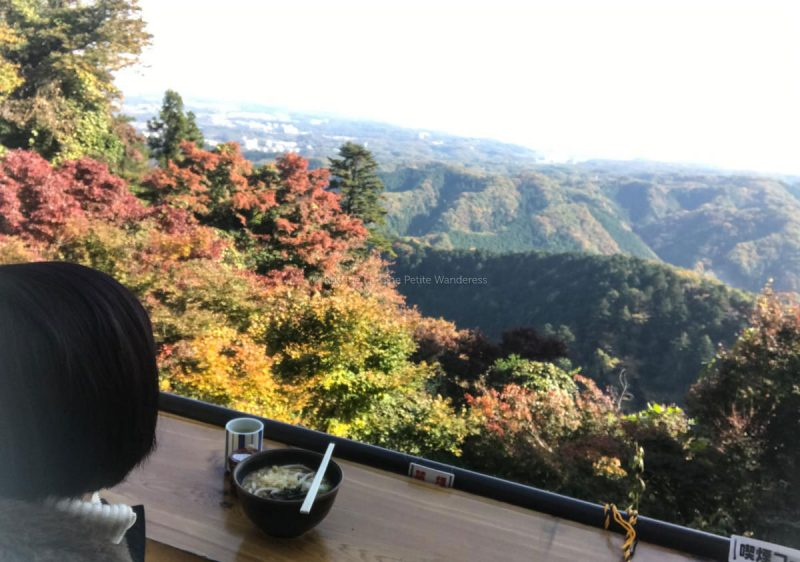 autumn foliage, Mount Tokyo