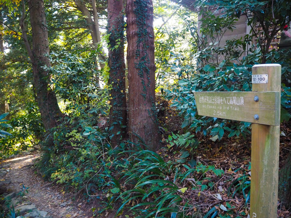 Trail 3, Mount Takao