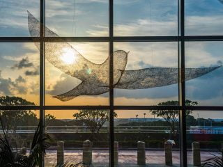 5 reasons to love Changi Airport's new Terminal 4