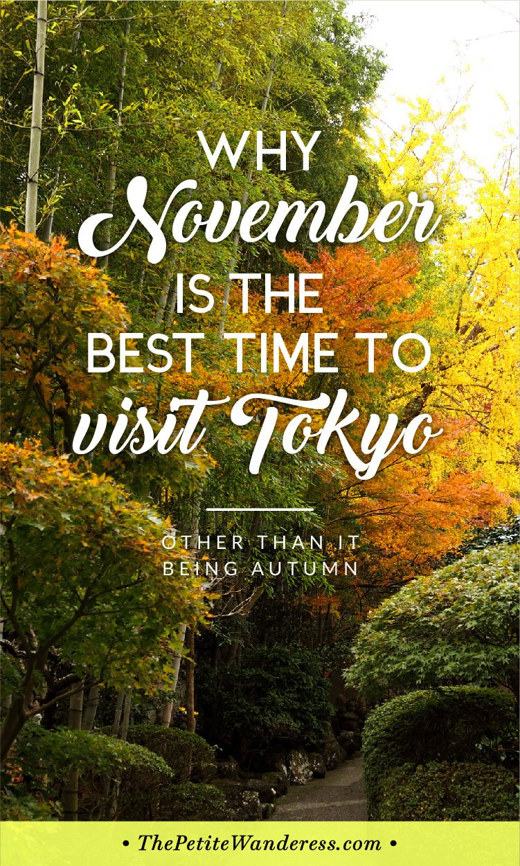 Best Time to Visit Tokyo: November • The Petite Wanderess