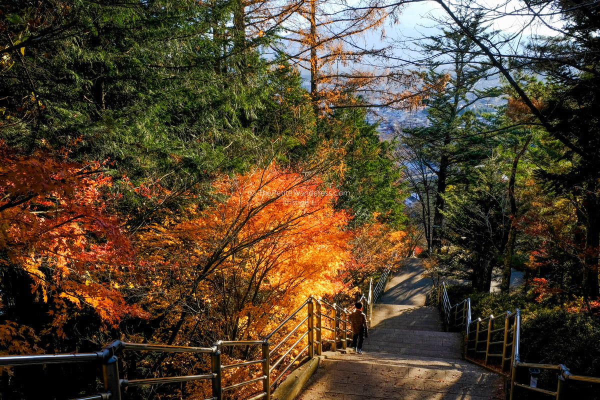Stunning photos of autumn in Japan • The Petite Wanderess