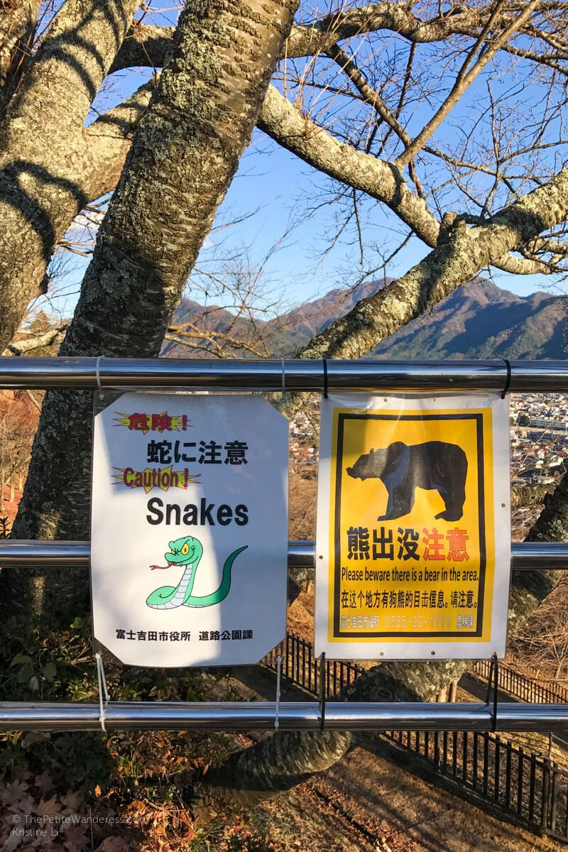 signs leading to Chureito Pagoda | Things to do in Kawaguchiko, Japan • The Petite Wanderess