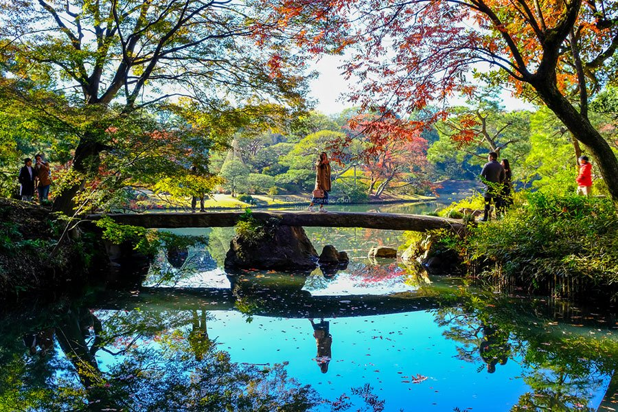 bridge at Rikugien | Tokyo Day Trips to take in autumn • The Petite Wanderess