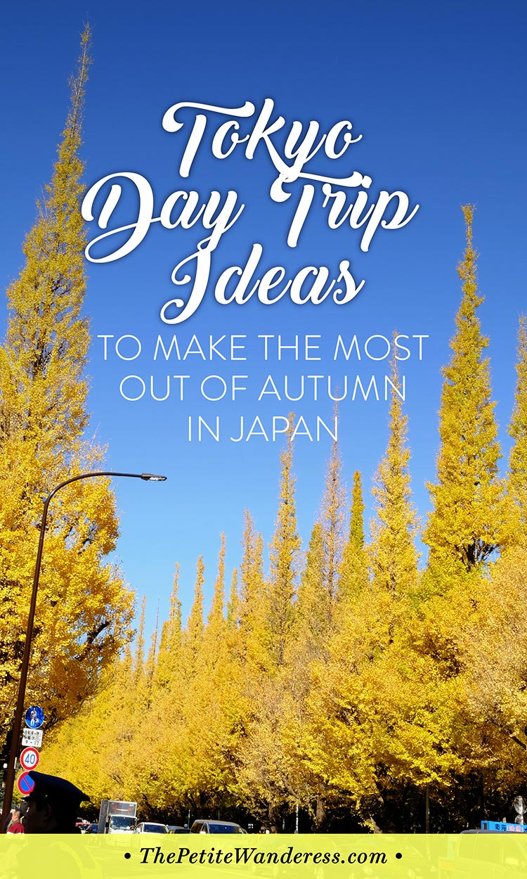 Best Tokyo Day Trips to take in autumn • The Petite Wanderess