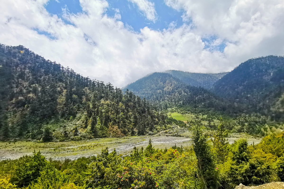 Radhi Village to highlands of Merak | Eastern Bhutan road trip photos • The Petite Wanderess