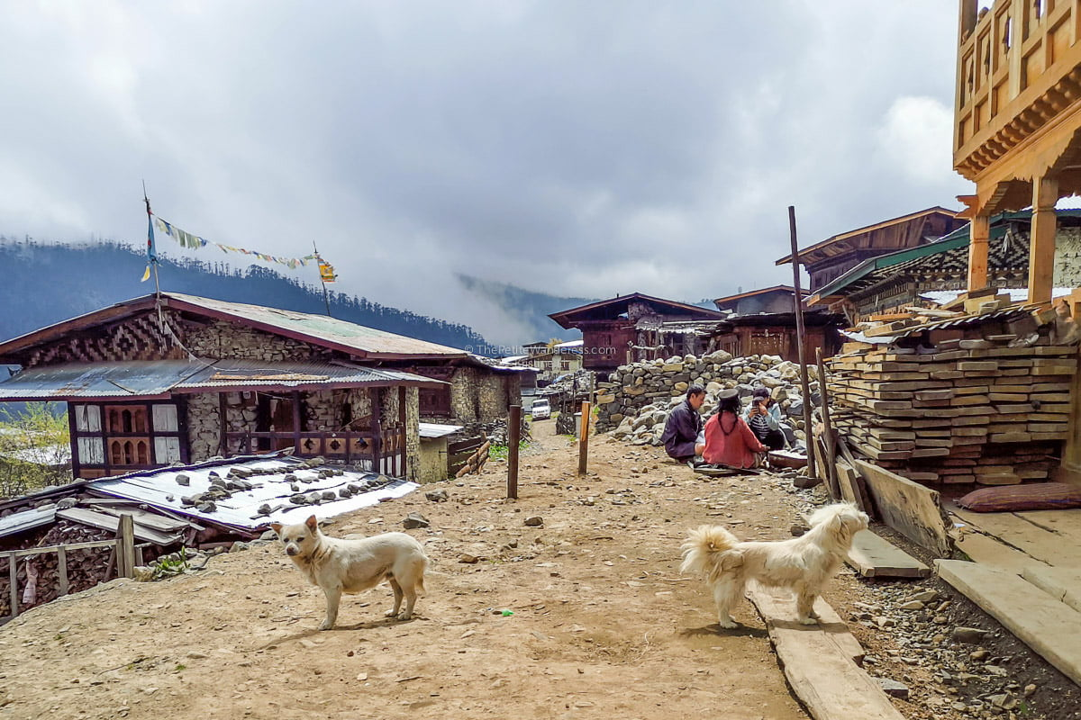 villagers | Eastern Bhutan road trip photos • The Petite Wanderess