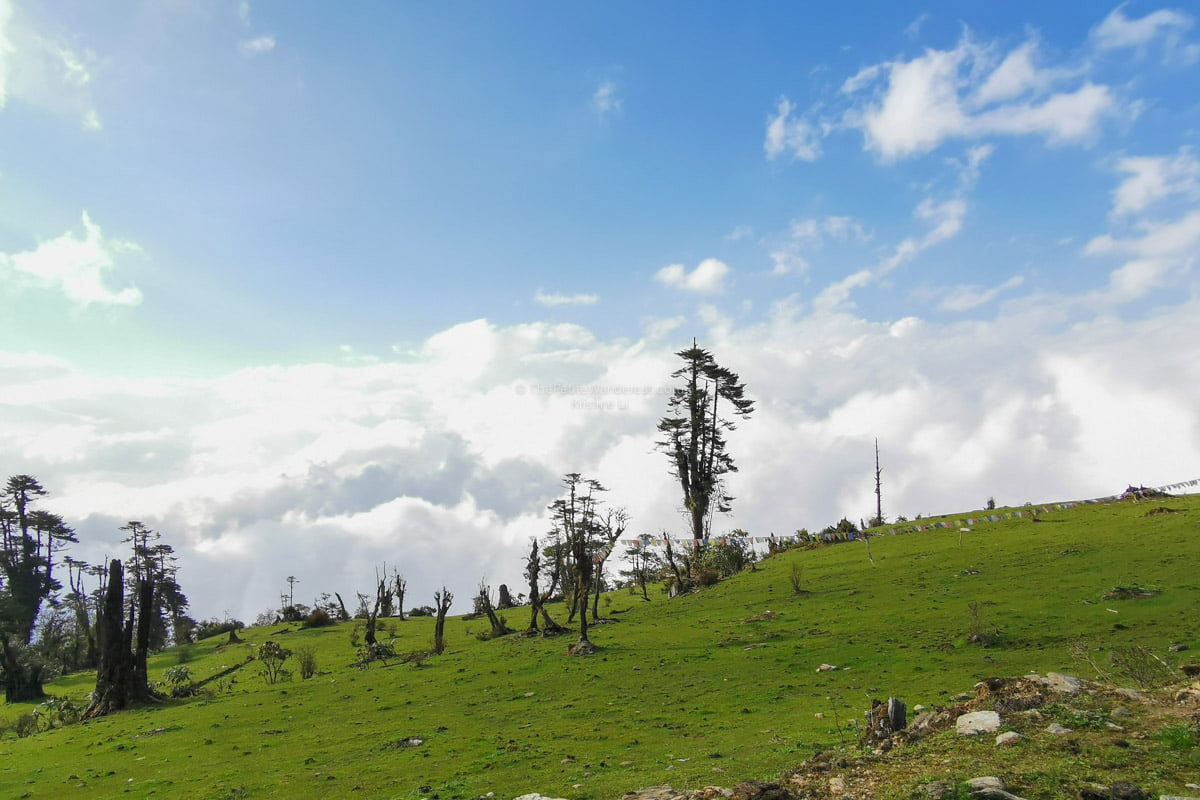 clouds below us | Eastern Bhutan road trip photos • The Petite Wanderess