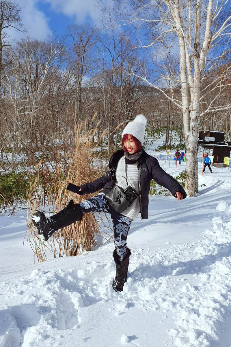 What to Know Before Your Ski Trip to Niseko • The Petite Wanderess