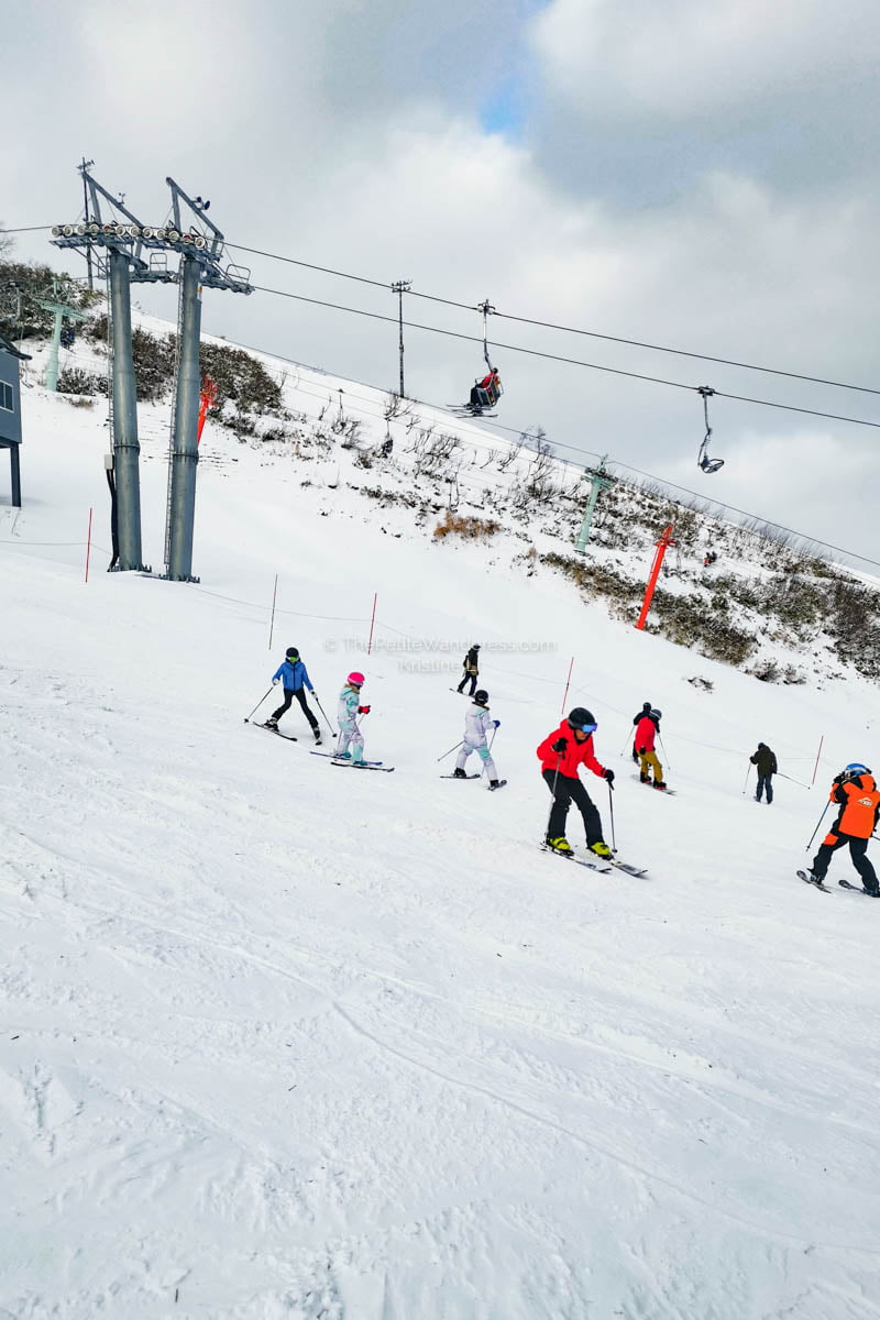 family ski slopes | What to Know for Your Niseko Ski Trip • The Petite Wanderess